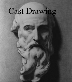Classical Realist Cast Drawing Victroia BC