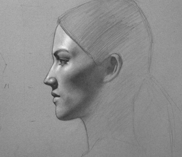 Portrait               Drawing Demo